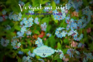 Cover Vergeet me niet - liefde kent geen sterfdatum en is eeuwig 05-05-2017