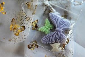 verkleind-vlinderzeep-monuta-dronten-01-10-2016-2