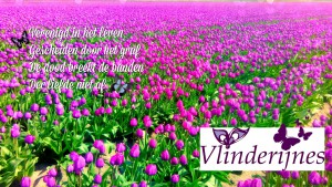 Logo foto edit met tulpenveld in Pic Monkey 04-2018