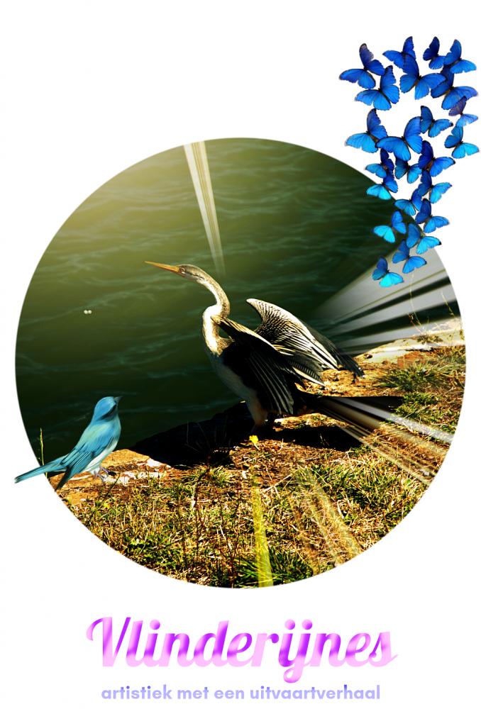 Verkleind - Doorstart logo Vlinderijnes 23-06-2020