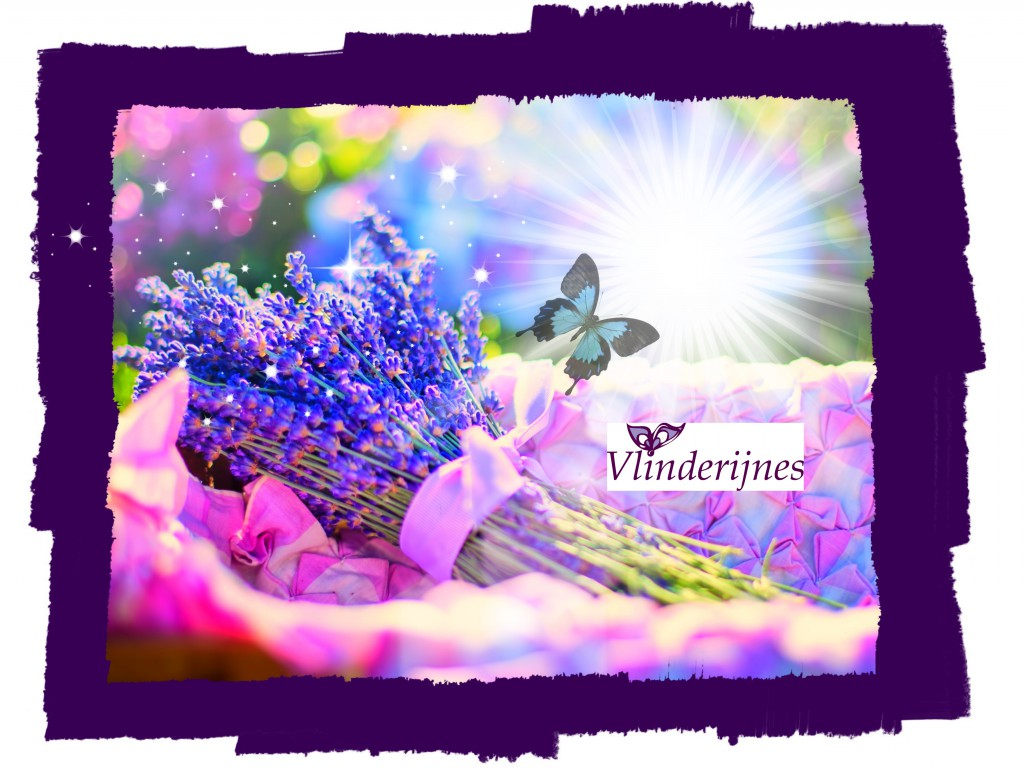 Magie van Vlinderijnes